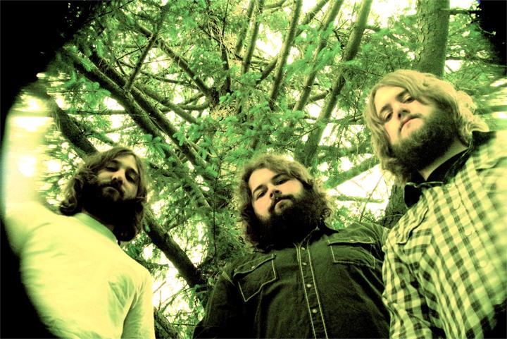 BuffaloKillers_tree