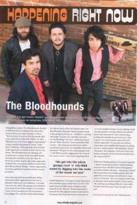 Bloodhounds_Shindig_feature-W